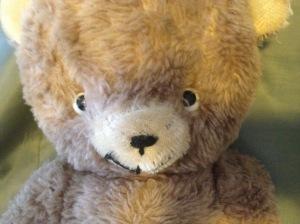 portraits-teddyz