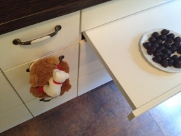 Bruno Hafer - 2